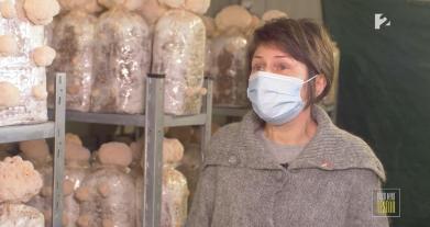 Miért fogyasszunk gyógygombákat? A GombaDR a TV2 Több mint testőr műsorában.